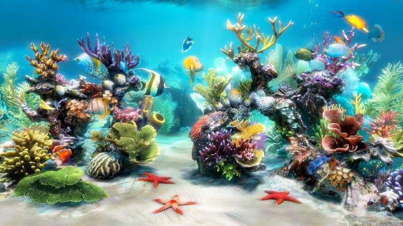 Скачать виджет аквариум на компьютер виндовс 7