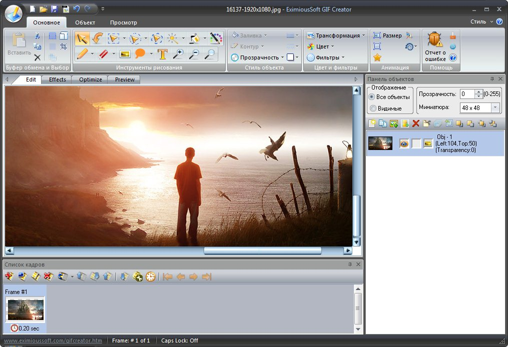 EximiousSoft GIF Creator 7.1 RUS - создание gif анимации из видео